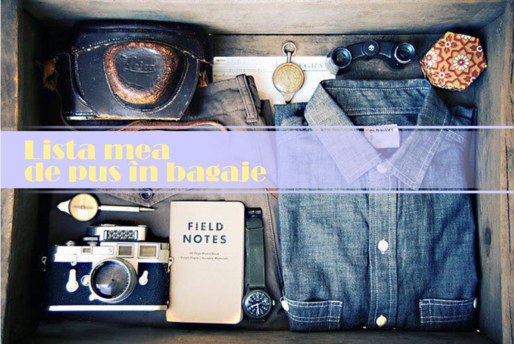 lista de pus in bagaje
